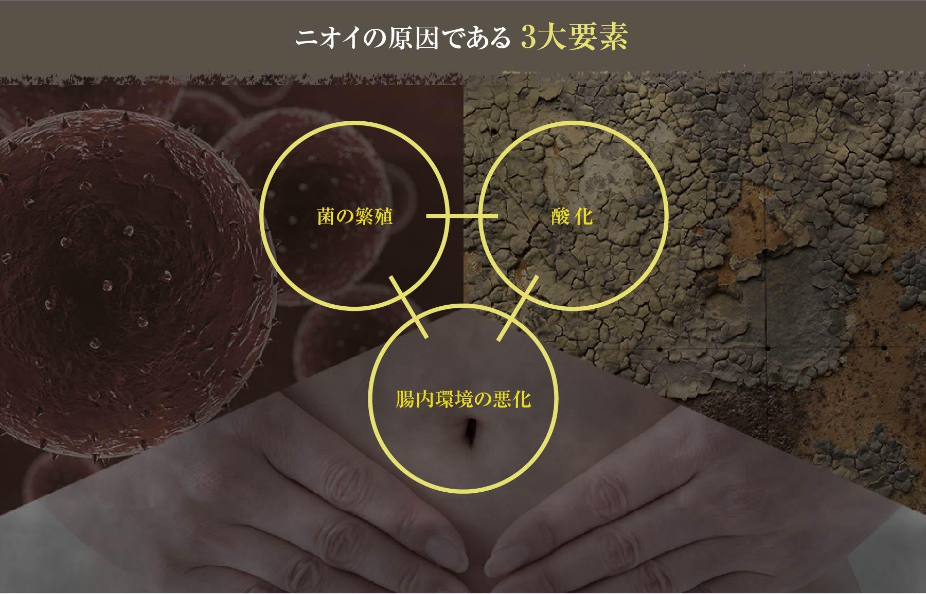 ニオイの原因である 3大要素